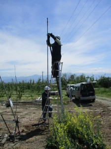 固定式散水施設の更新 施工中(2)